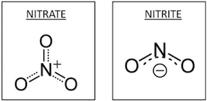 Structures of Nitrate and Nitrite Ions